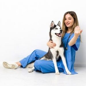 Veterinary-for-Canine