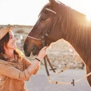 Veterinary-for-Equine